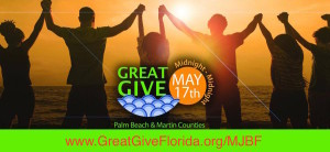 GREAT GIVE 2017 MJBF
